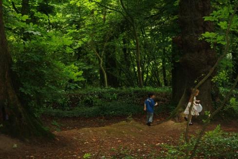 fairy trail 020